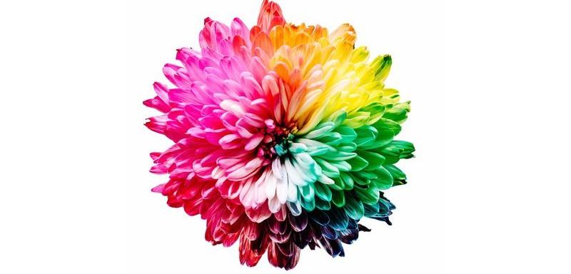 paleta-colores-cmyk-rgb